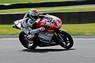 2010 Australian Formula Xtreme Championship Round 5 Eastern Creek Raceway   Fx Pro-Twins - Nakedbikes   Richard Liminton   LDA Racing   Ducationly.com    Ducati 1198 by DavidIori