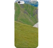 Panorama of green mountains with a cow grazing (Italy) iPhone Case/Skin