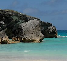 A beautiful Bermuda beach by RegMan56