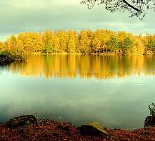 High Dam in Autumn by Jamie  Green