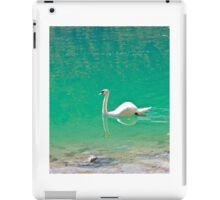 Swan on 'clear water of a lake (Italy) iPad Case/Skin