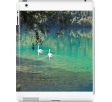 swans on the 'clear water of a lake (Italy) iPad Case/Skin