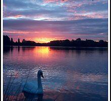 Morning has broken by Paula Walker
