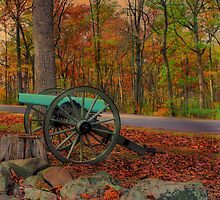The Last Of Fall Color by Sharon Batdorf