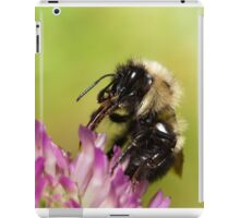 Bumblebee Feeding on Nectar iPad Case/Skin