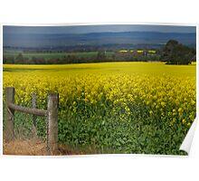 Golden Fields Poster