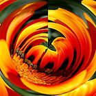 Orange Swirl  by Michelle Crouch