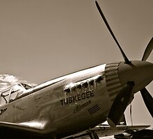 Tuskegee Airmen P51 Mustang Fighter Plane by Amy McDaniel
