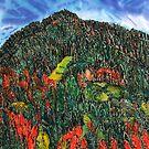 Spots of Autumn Colours by Nira Dabush