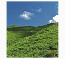 Alpine meadows One Piece - Long Sleeve