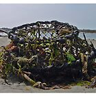 Washed Up by Robert Abraham