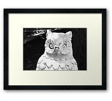 Spooky Owl Framed Print