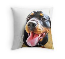 Is it ice-cream time yet? Throw Pillow