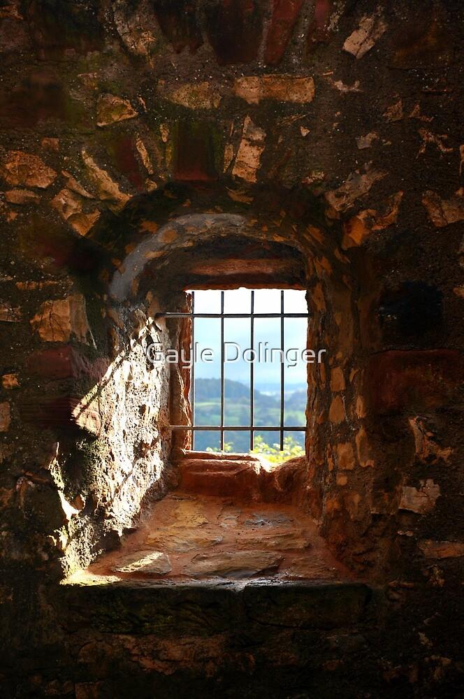 The Window at Burg Rötteln  by Gayle Dolinger
