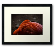 P.Y.T. (Pretty Young Thing) Framed Print