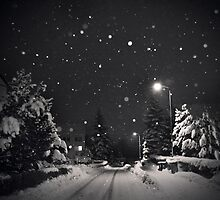 silent night by Dorit Fuhg