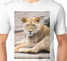 Pride of the Jungle Unisex T-Shirt