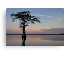 Cypress sunrise Canvas Print