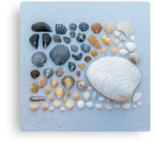 Sally Sells Sea Shells and I bought 'em Canvas Print