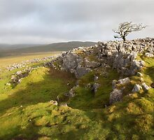 Malham Moor & Bordley by SteveMG