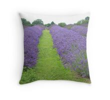 Mayfield Lavender. Banstead, Surrey Throw Pillow