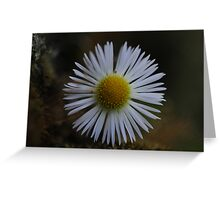 I see you :) Greeting Card