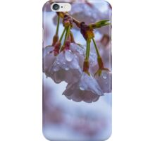 Top of the Morning to Ya iPhone Case/Skin