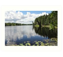 Hayes Lake Art Print