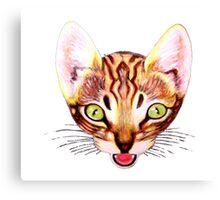 cat love Canvas Print