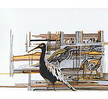 Autumn Birds Photographic Print