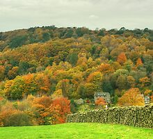 The Colours of Autumn-Town End by Jamie  Green