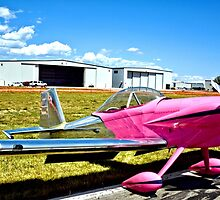 Pink Panther Aircraft by Amy McDaniel