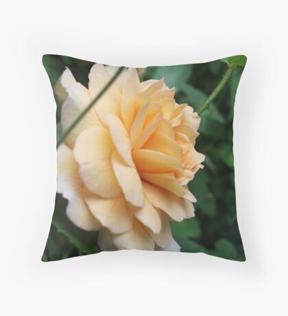 Peach Rose Throw Pillow