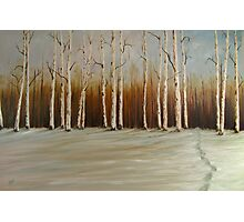 "Footprints in the Snow 36""x24"" - Oil Photographic Print"
