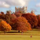 Wollaton Hall and Deer Park Nottingham by Ray Clarke