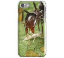 Symbiotic Relationships iPhone Case/Skin
