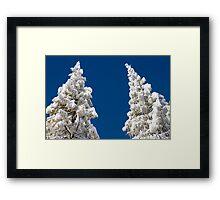 Fresh Snow Framed Print