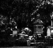 Bonaventure Cemetery by Mattie Bryant