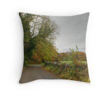 The Colours of Autumn-Finsthwaite Lane Throw Pillow