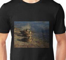 Lakeside Sunlight Unisex T-Shirt