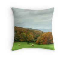 The Colours of Autumn-Finsthwaite Field Throw Pillow