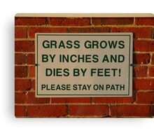Grass grows Canvas Print