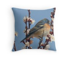 North American Bluebird  Throw Pillow