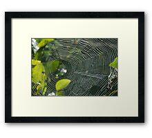 web of lp Framed Print