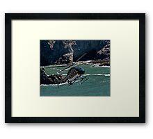 Sonoma Coast Flight Framed Print