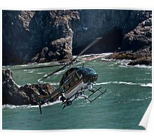 Sonoma Coast Flight Poster