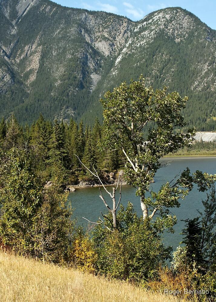 Roadside View in Banff  by Roger Bernabo