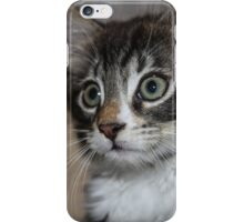 Kitten Love iPhone Case/Skin