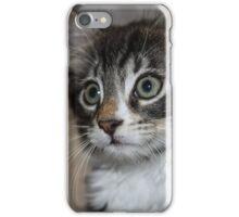 Kitten Love iPhone Case/Skin