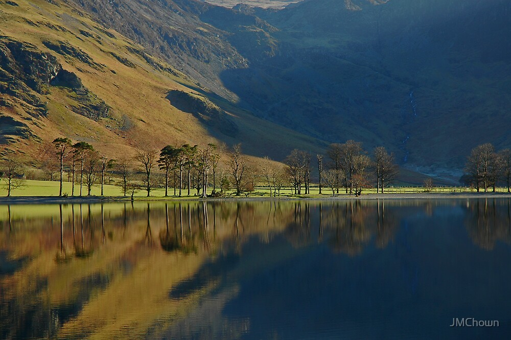 Buttermere Trees by JMChown